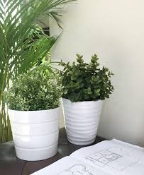 why you should use fake plants in your