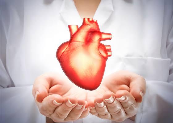 """Resultado de imagem para saúde cardiovascular"""""""