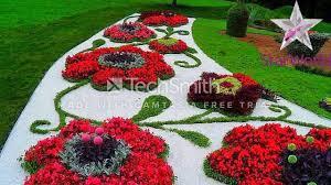 اجمل الزهور الطبيعية Youtube