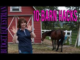 10 barn s budget equestrian you