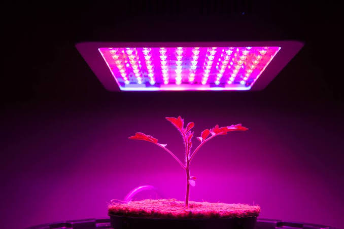 """Image result for Mars Hydro 300W"""""""