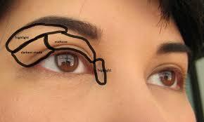 makeup how to eyeshadow everyday