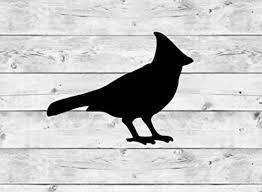 Amazon Com Cardinal Vinyl Sticker Decal Bird Decorations Bird Party Supplies Bird Theme Spring Theme Animal Decorations Bird Decal Sticker Glitter Metallic Holographic Handmade