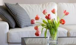 natural diy upholstery cleaner