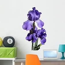 Amazon Com Wallmonkeys Purple Iris Flower Wall Decal Peel And Stick Floral Graphic 36 In H X 27 In W Wm175308 Furniture Decor