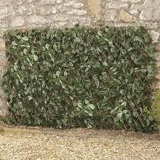 Expandable Artificial Ivy Hedge Trellis 1 X 2m Waltons