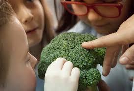 Resultado de imagen de sentido del olfato para niños