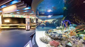 the national aquarium in baltimore
