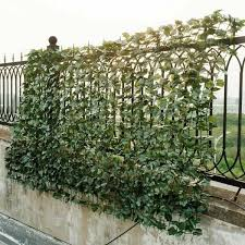 Costway 59 In X 118 In Faux Ivy Leaf Decorative Privacy Fence Screen Artificial Hedge Fencing Gt3048 In 2020 Artificial Hedges Privacy Fence Screen Fence Screening