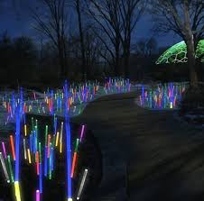 missouri botanical garden set to glow