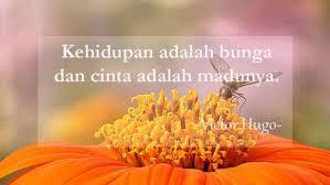 kata kata mutiara bijak singkat islami cinta sejati lucu