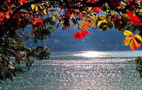 Colori dell'autunno - Galleria fotografica L'Eco di Bergamo - Notizie di  Bergamo e provincia