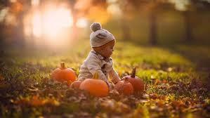 baby nature sunlight pumpkin fall