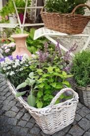 herb garden design ideas for small spaces