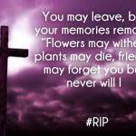 rest in peace quotes pictures rip sayings