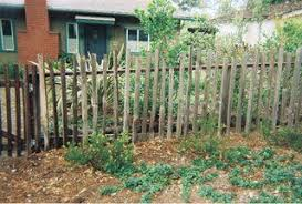 10 Grape Stakes Fencing Ideas Stakes Fence Grapes