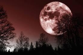 Luna rosa: oggi naso all'insù per vederla e godere del suo ...