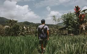 Volunteer In Bali Turtle Conservation Programs Teach English More Volunteer Forever