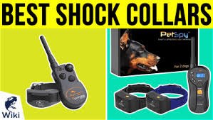 Top 7 Electric Dog Fences Of 2019 Video Review
