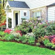 front of house best small shrubs
