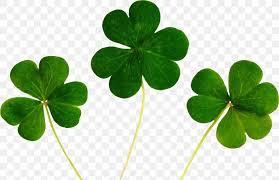 luck four leaf clover desktop wallpaper