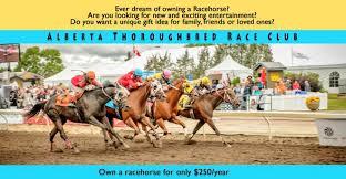 alberta thoroughbred race club own a