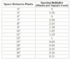 calculator plants per square foot