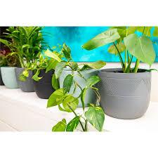 28 x 23cm black ivy fibreglass pot
