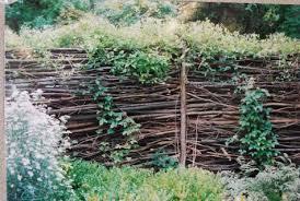 Springtime Garden Centre Diy Twig Garden Fence
