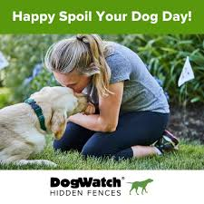 Dogwatch Hidden Fences And Training Products Publications Facebook