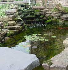 wonderful garden pond ideas with koi