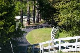 Driveway With White Fence And Pine Trees Buy This Stock Photo And Explore Similar Images At Adobe Stock Adobe Stock