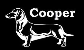 Dachshund Sticker Custom Dog Name Vinyl Decal Customized Stickers Ebay