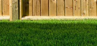 What Type Of Fence Is Right For You