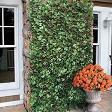 Windscreen4less Expandable Stretchable Artificial Leaf Leaves Faux Ivy Privacy Fence Small Artificial Plants Artificial Plants Outdoor Artificial Garden Plants