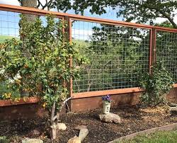 Other Wire Fence Designs Perfect On Other With Regard To Welded Pcok Co 24 Wire Fence Designs Simple On Other Intended For Ideas 22 Awesome And Sitez Co 6 Wire Fence Designs
