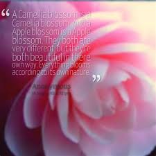 camellia flower quotes