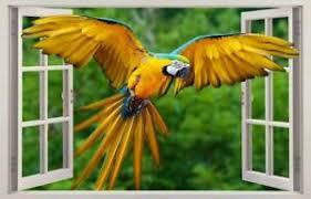 Parrot 3d Window Decal Wall Sticker Home Decor Art Mural Animals Birds J705 Ebay