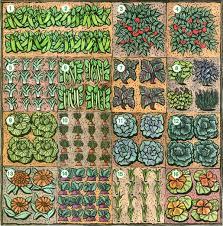 the sf veg plot jardinage en carrés