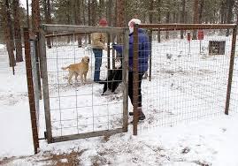 Fox Run Dog Park El Paso County Community Services