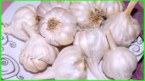 Eat Raw Garlic on Empty Stomach/పచ్చి వెల్లుల్లి ...