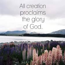 christian quotes bible quotes flowers creation knowing god