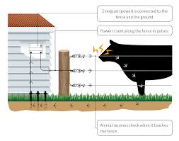 What Is Electric Fencing Electric Fences 101 Gallagher