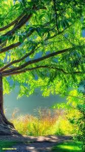 picsart blur nature background hd 13