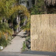 Backyard X Scapes 96 In W X 48 In H Natural Reed Outdoor Privacy Screen In The Outdoor Privacy Screens Department At Lowes Com