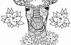 Kleurplaten Kleurplaat Giraf