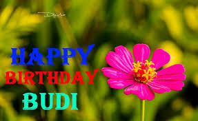 happy birthday wishes for wife in i language bless