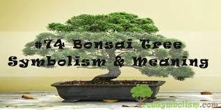 74 bonsai tree symbolism meaning