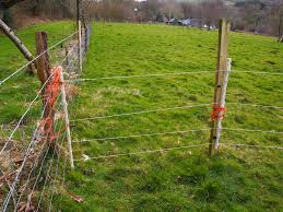 What Is An Electric Fence Energiser Inter Memory