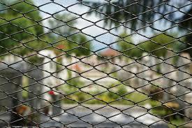 Fence Cemetery Background Free Photo On Pixabay